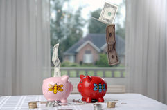 Two piggy banks and money. Two fat piggy banks and falling paper money mixed with coins Stock Image