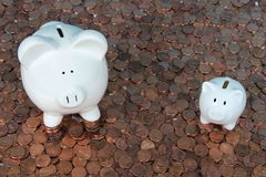 Two piggy banks on pennies looking up. Large and small white piggy banks sitting on hundreds of old and new American pennies. With the collapse of the zinc Stock Photo