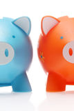 Two piggy Stock Photo