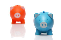 Two piggy Royalty Free Stock Images