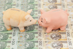 Piggy with money. Two piggy on polish money as background Stock Image