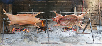 Two pigs that cook slowly on enormous steel spit in the gigantic Stock Images