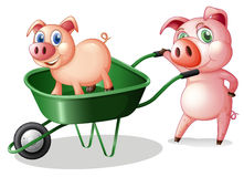 Two pigs with a green cart Stock Photo