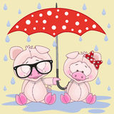 Two Pigs with umbrella Stock Photo