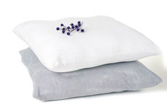 Two pillows and a branch of flowers Stock Photos