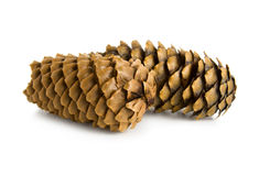 Two pine cones Royalty Free Stock Images