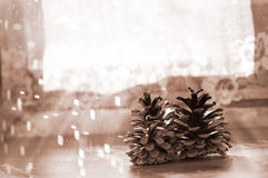 Two pine cones on the background of a window Stock Photos