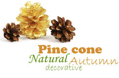 Two pine cones and one golden cone. Over white background with shadow Royalty Free Stock Photo