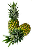 Two Pineapple Royalty Free Stock Photography