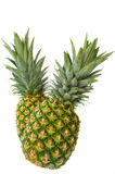 Two Pineapple Royalty Free Stock Image