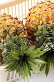 Two pineapple Royalty Free Stock Photo