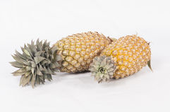 Two pineapple. Good two pineapples studio white background Royalty Free Stock Image