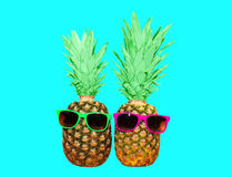 Two pineapple with sunglasses on blue background, ananas. Two pineapple with sunglasses on blue background, colorful ananas photo Stock Photos