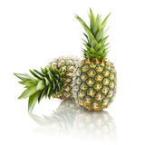 Two pineapples Stock Image