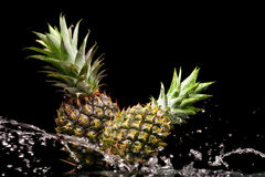 Two pineapples Royalty Free Stock Image