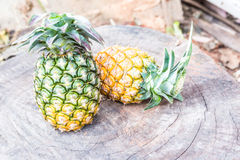 Two Pineapples on wooden grunge background Royalty Free Stock Images