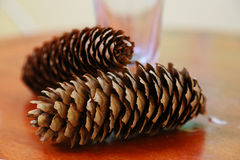 Two pinecones. Scenery of two pinecones on the table Stock Image