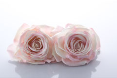 Two pink artificial roses Royalty Free Stock Image