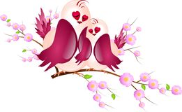 Two pink birs on twig of fructiferous tree Stock Images
