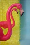 Two pink flamingos. Two kitschy pink flamingos on a vintage backgound Stock Photos