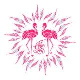 Two pink flamingos in love, valentine postcard, vector illustrat Stock Image