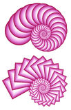 Two Pink Fractal Spirals Stock Photography