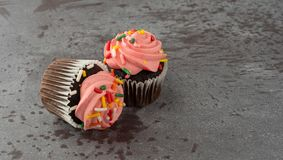 Two pink frosted chocolate cupcakes on a gray background side view stock photos