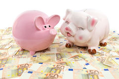 Two pink piggy banks on spread euro notes. Two pink piggy banks on spread euro bills isolated on white background Royalty Free Stock Photography