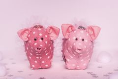 Two pink piggy with white polka dots, skirts and hand-made wreaths stand on a white pink background with snowflakes and soft balls. Two pink piggy with white stock photos