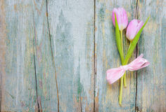 Two pink tulips on the wooden background Royalty Free Stock Images