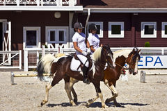 Two pinto horses with female riders at an equestrian event. TULA, RUSSIAN FEDERATION - JUNE 12, 2014: Pair of pinto coloured horses with female riders at the Stock Images