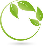 Two plants, leaves, wellness and naturopathic logo Royalty Free Stock Photography