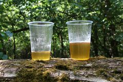 Two plastic cups with beer Stock Photography
