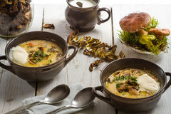 Two plates of mushroom soup and fresh ingredients Stock Photography