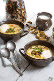 Two plates of wild mushroom soup stock image