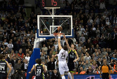 Two players in the fight for the ball. BELGRADE-FEBRUARY 24:Top 16 Euroleague Basketball match:Partisan(SRB) vs Real Madrid(ESP), Two players in the fight for royalty free stock images