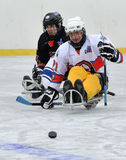 Two players playing sledge hockey Royalty Free Stock Photography