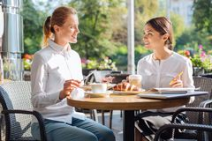 Two pleasant colleagues discussing work at lunch. Pleasant conversation. Two beautiful female office workers sitting in a cafe, having lunch and discussing work Royalty Free Stock Photo