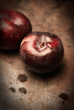 Two Plums. On a rusty background Stock Images