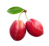 Two plums isolated Royalty Free Stock Image