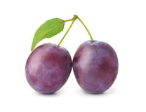 Two plums with leaf Stock Image