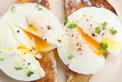 Two Poached Eggs on Toast. Perfectly poached eggs on buttered toast Stock Photography