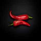 Two pods of red pepper Royalty Free Stock Photography