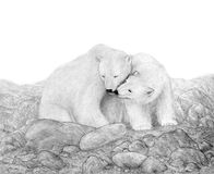 Two Polar Bears in a Rocky Landscape Royalty Free Stock Photo