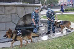 Two police officers with service dogs near the fountain during the heat in the city royalty free stock images