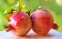 Two  pomegranate with leaves Stock Photo
