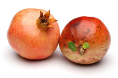 Two Pomegranate Royalty Free Stock Photo