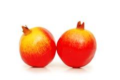 Two pomegranates Stock Image
