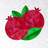 Two pomegranates, vector illustration. Royalty Free Stock Photography
