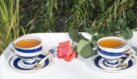 Two porcelain cups with tea Royalty Free Stock Images
